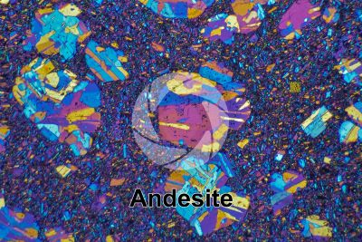Andesite. Costa Rica. Thin section in cross polarized light with lambda filter. 32X