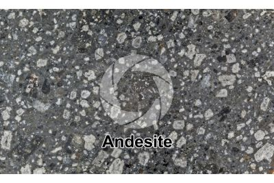 Andesite. Indonesia. Polished section. 1X
