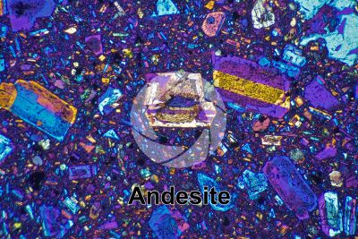 Andesite. Indonesia. Thin section in cross polarized light with lambda filter. 32X