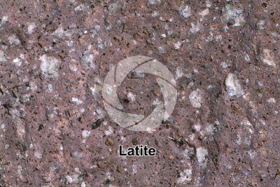 Latite. Capraia. Tuscany. Italy. Polished section. 2X