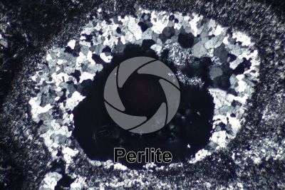Perlite. Ponza. Pontine Islands. Lazio. Italy. Thin section in cross polarized light. 32X