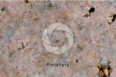 Porphyry. Cuasso al Monte. Lombardy. Italy. Polished section. 2X