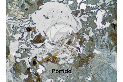 Porfido. Sezione sottile in luce polarizzata a Nicol incrociati. 32X