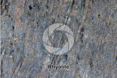 Rhyolite. Polished section. 2X