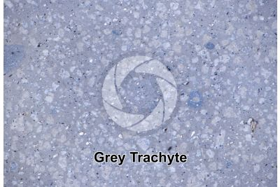 Grey Trachyte. Veneto. Italy. Polished section. 2X