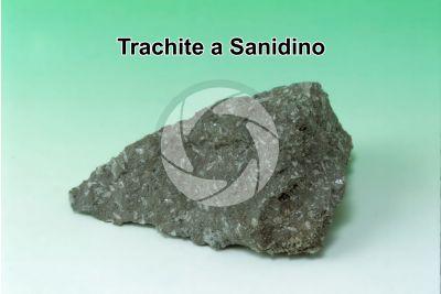 Trachite a Sanidino