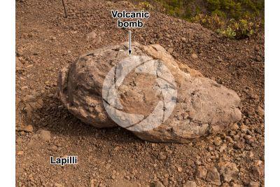 Volcanic bomb. La Palma. Canary Islands. Spain