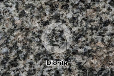 Diorite. Biella. Lombardy. Italy. Polished section. 2X