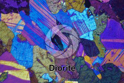 Diorite. Sezione sottile in luce polarizzata a Nicol incrociati con filtro lambda. 32X