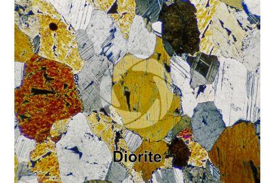 Diorite. Sezione sottile in luce polarizzata a Nicol incrociati. 32X