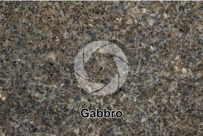 Gabbro. Costa Rica. Polished section. 2X