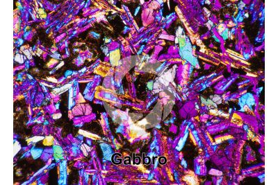 Gabbro. Costa Rica. Thin section in cross polarized light with lambda filter. 32X