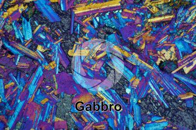 Gabbro. Siberia. Sezione sottile in luce polarizzata a Nicol incrociati con filtro lambda. 32X