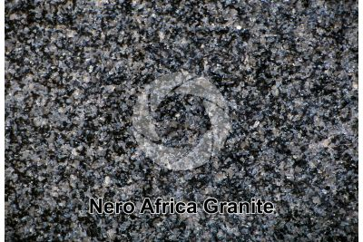 Nero Africa Granite. South Africa. Polished section. 1X