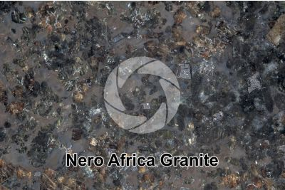 Nero Africa Granite. South Africa. Polished section. 2X