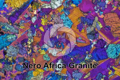 Nero Africa Granite. South Africa. Thin section in cross polarized light with lambda filter. 32X