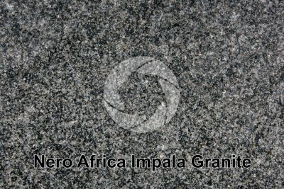 Nero Africa Impala Granite. Rustenburg. South Africa. Polished section