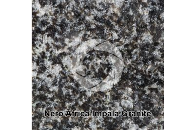 Nero Africa Impala Granite. Rustenburg. South Africa. Polished section. 1X