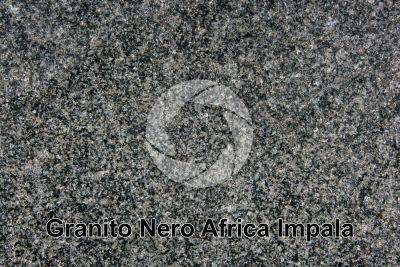 Granito Nero Africa Impala. Rustenburg. Sudafrica. Sezione lucida