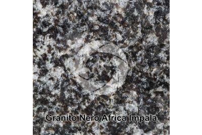 Granito Nero Africa Impala. Rustenburg. Sudafrica. Sezione lucida. 1X