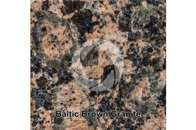 Baltic Brown Granite. Finland. Polished section. 1X