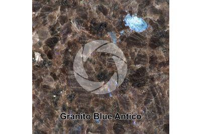 Granito Blue Antico. Rogaland. Norvegia. Sezione lucida. 1X