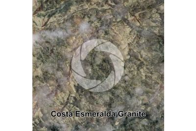 Costa Esmeralda Granite. Brazil. Polished section. 1X
