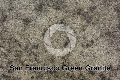 San Francisco Green Granite. Minas Gerais. Brazil. Polished section