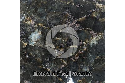 Emerald Pearl Granite. Vestfold. Norway. Polished section. 1X