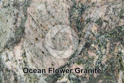 Ocean Flower Granite. Brazil. Polished section