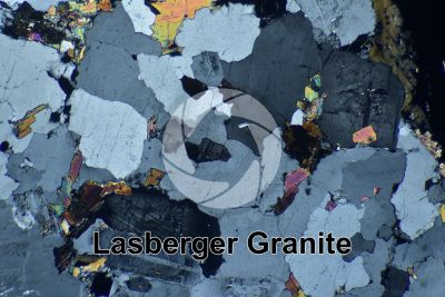 Lasberger Granite. Austria. Thin section in cross polarized light. 32X