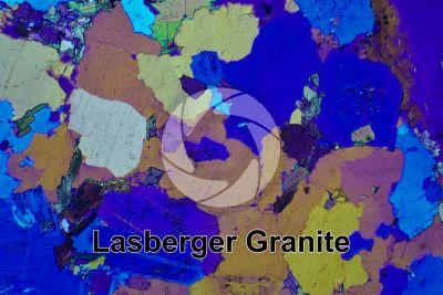 Lasberger Granite. Austria. Thin section in cross polarized light with lambda filter. 32X
