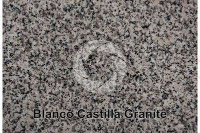 Blanco Castilla Granite. Spain. Polished section. 1X