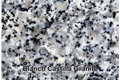 Blanco Castilla Granite. Spain. Polished section. 2X