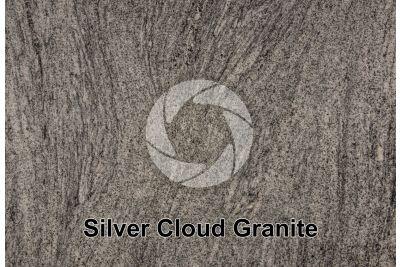Silver Cloud Granite. Georgia. USA. Polished section
