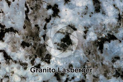 Granito Lasberger. Austria. Sezione lucida. 2X