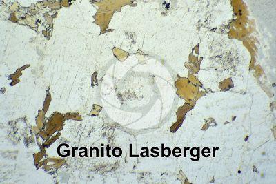 Granito Lasberger. Austria. Sezione sottile in luce polarizzata. 32X