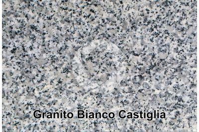 Granito Bianco Castiglia. Spagna. Sezione lucida. 1X