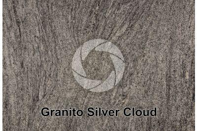 Granito Silver Cloud. Georgia. USA. Sezione lucida