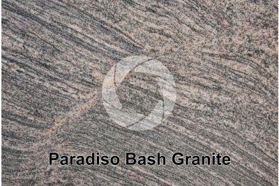 Paradiso Bash Granite. Tamil Nadu. India. Polished section