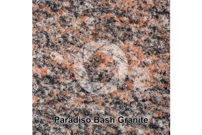 Paradiso Bash Granite. Tamil Nadu. India. Polished section. 1X