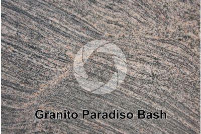 Granito Paradiso Bash. Tamil Nadu. India. Sezione lucida