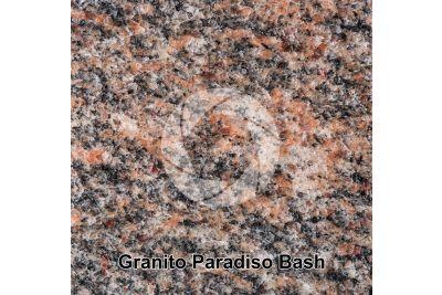 Granito Paradiso Bash. Tamil Nadu. India. Sezione lucida. 1X