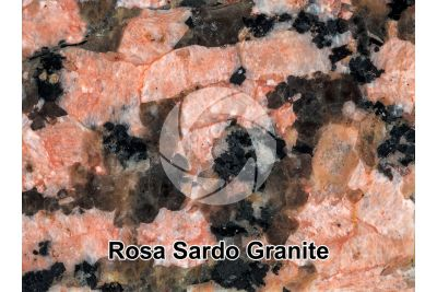Rosa Sardo Granite. Sardinia. Italy. Polished section. 1X
