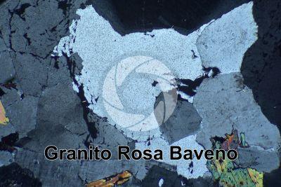 Granito Rosa Baveno. Piemonte. Italia. Sezione sottile in luce polarizzata a Nicol incrociati. 32X