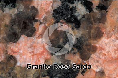 Granito Rosa Sardo. Sardegna. Italia. Sezione lucida. 2X