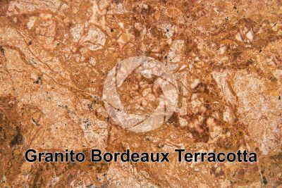Granito Bordeaux Terracotta. Brasile. Sezione lucida