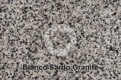 Bianco Sardo Granite. Sardinia. Italy. Polished section