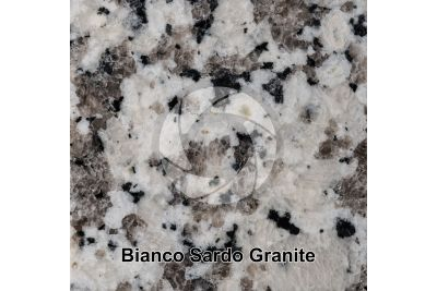 Bianco Sardo Granite. Sardinia. Italy. Polished section. 1X
