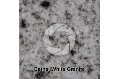 Bethel White Granite. Bethel. Vermont. USA. Polished section. 1X